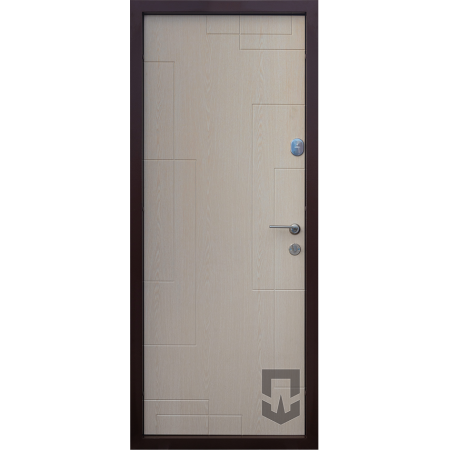 Двері вхідні Craft