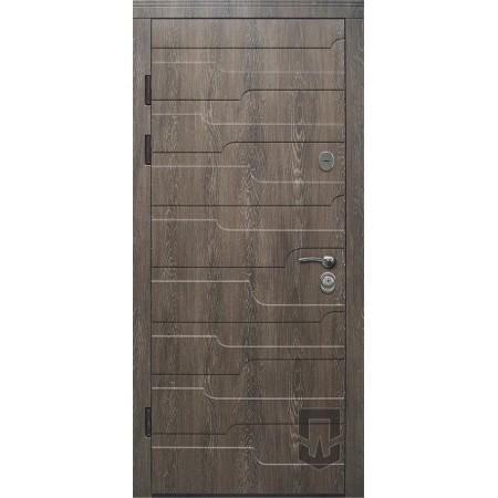 Двери Патриот Степь